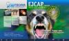 EJCAP24(3)_cover.png